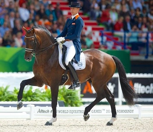 Hans Peter Minderhoud met Johnson en JUDI frontriem Famous colorado gold