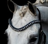 Swarovski blue Browband tricolore denim blue