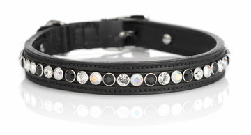 Hondenhalsband Spikey Classic tricolore black