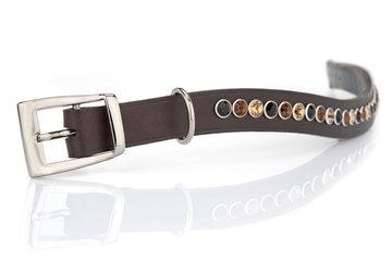 Hondenhalsband Spikey tricolore brown