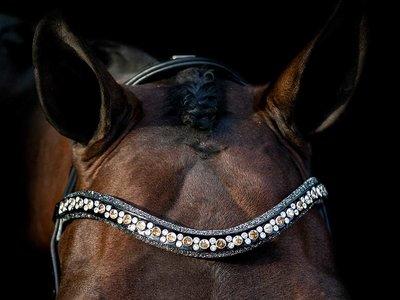 Swarovski browband Rocks gold