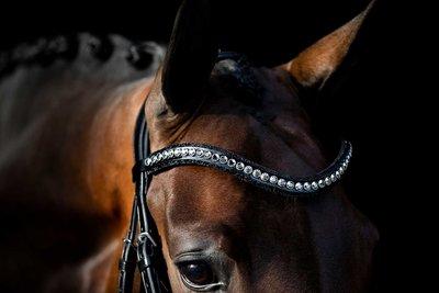 Swarovski black Browband chrome