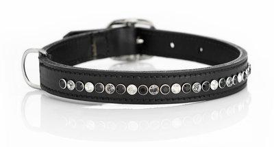 Hondenhalsband Spikey Classic tricolore black